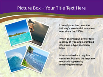 0000073192 PowerPoint Template - Slide 23