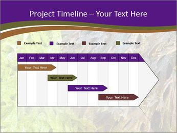 0000073192 PowerPoint Template - Slide 25