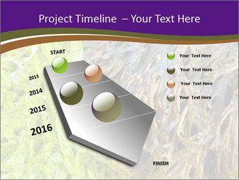 0000073192 PowerPoint Template - Slide 26