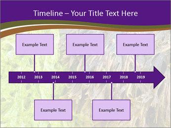 0000073192 PowerPoint Template - Slide 28