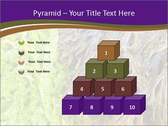 0000073192 PowerPoint Template - Slide 31