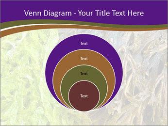 0000073192 PowerPoint Template - Slide 34
