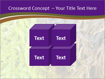 0000073192 PowerPoint Template - Slide 39