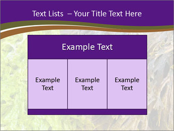 0000073192 PowerPoint Template - Slide 59