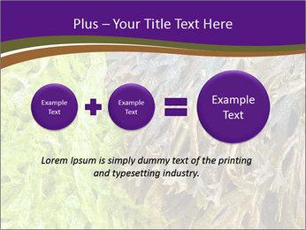 0000073192 PowerPoint Template - Slide 75