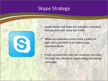 0000073192 PowerPoint Template - Slide 8