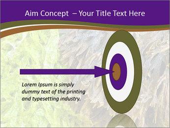 0000073192 PowerPoint Template - Slide 83