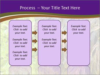 0000073192 PowerPoint Template - Slide 86