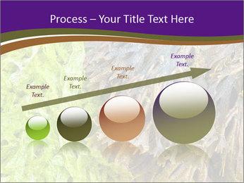 0000073192 PowerPoint Template - Slide 87