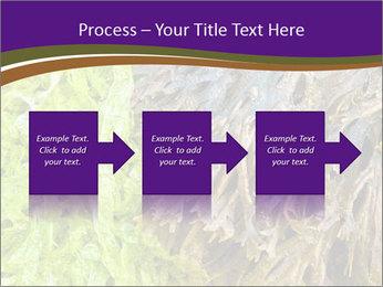 0000073192 PowerPoint Template - Slide 88