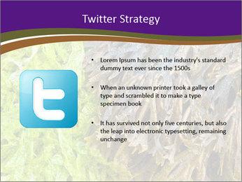 0000073192 PowerPoint Template - Slide 9