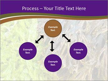 0000073192 PowerPoint Template - Slide 91