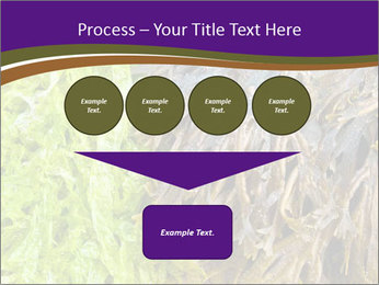 0000073192 PowerPoint Template - Slide 93