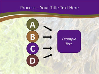 0000073192 PowerPoint Template - Slide 94