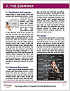 0000073193 Word Template - Page 3