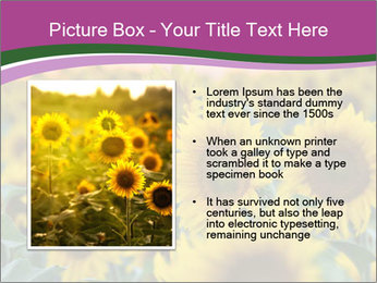 0000073194 PowerPoint Template - Slide 13