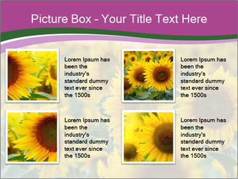 0000073194 PowerPoint Template - Slide 14