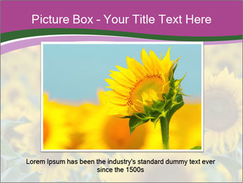 0000073194 PowerPoint Template - Slide 15