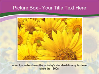 0000073194 PowerPoint Template - Slide 16