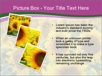 0000073194 PowerPoint Template - Slide 17