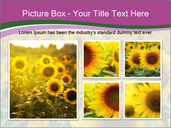 0000073194 PowerPoint Template - Slide 19