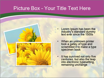 0000073194 PowerPoint Template - Slide 20