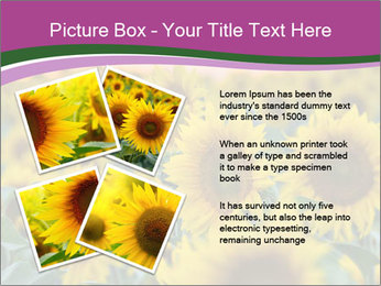 0000073194 PowerPoint Template - Slide 23