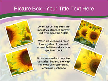 0000073194 PowerPoint Template - Slide 24