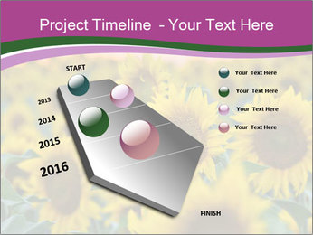 0000073194 PowerPoint Template - Slide 26