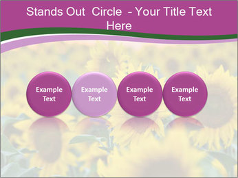 0000073194 PowerPoint Template - Slide 76