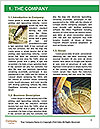 0000073211 Word Template - Page 3