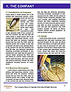 0000073212 Word Template - Page 3