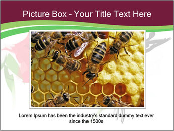 0000073215 PowerPoint Template - Slide 15