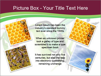 0000073215 PowerPoint Template - Slide 24