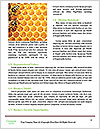 0000073215 Word Templates - Page 4