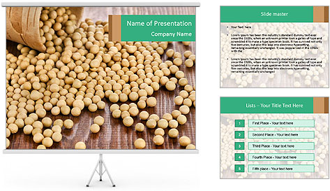 0000073216 PowerPoint Template
