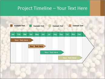 0000073216 PowerPoint Template - Slide 25