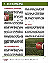 0000073222 Word Template - Page 3