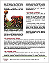 0000073222 Word Template - Page 4
