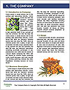 0000073224 Word Templates - Page 3