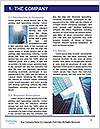 0000073227 Word Template - Page 3