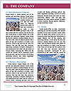 0000073228 Word Template - Page 3