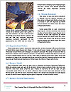 0000073228 Word Template - Page 4