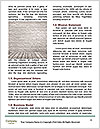 0000073239 Word Template - Page 4