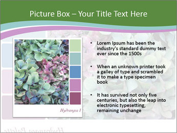 0000073241 PowerPoint Template - Slide 13