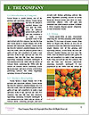 0000073241 Word Templates - Page 3