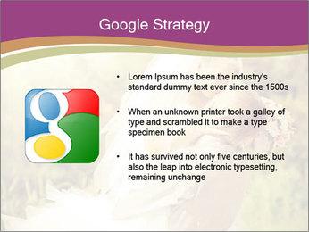 0000073243 PowerPoint Templates - Slide 10