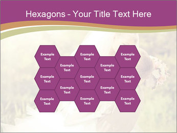 0000073243 PowerPoint Templates - Slide 44