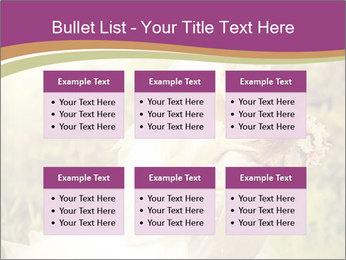 0000073243 PowerPoint Template - Slide 56