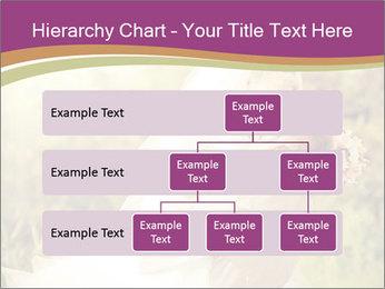 0000073243 PowerPoint Templates - Slide 67